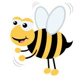 Honey Bee 01. Cartoon style honey bee searching flowers Royalty Free Stock Photo