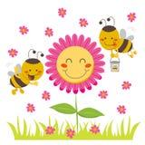 Honey Bee stock illustration