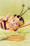 Honey Bee Baby Fotografia Stock Libera da Diritti