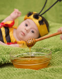 Honey Bee Baby Image stock