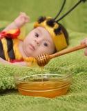 Honey Bee Baby Fotografering för Bildbyråer