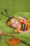 Honey Bee Baby Fotografie Stock Libere da Diritti