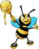 Honey Bee, Bee, Honey, Animal Stock Image