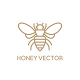 Honey bee concept. Vector logo design template in trendy minimal linear style - honey bee concept - emblem for food packaging Stock Images