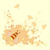 Honey Bee Design. Grunge Honey Bee Design with ink splashes on background Stock Photo