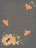 Honey Bee Design. On comb background Stock Images