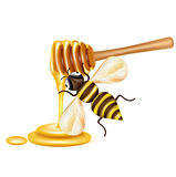 Honey bee with dripper isolated on white Stock Photo