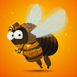 Honey bee drone. Bee drone. Male bee eating honey. character design Stock Photography