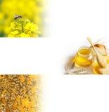 Honey Bee-Fahne Stockbild
