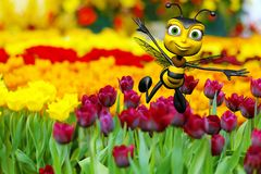 Honey bee flying above the flowers Stock Photo