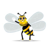 Honey bee hallo 2 Royalty Free Stock Images