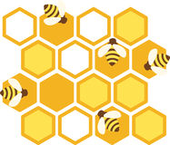 Honey Bee Hive Stock Images