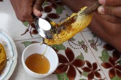 Honey Bee Hive Royalty Free Stock Photo