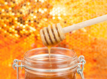 Honey. Bee hive isolated on background in gold Stock Photo
