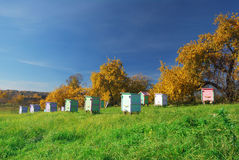 Honey bee hives royalty free stock images