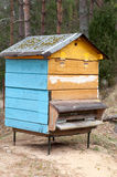 Honey bee hives in winter. Beekeeping. Honey bee hives in winter. Natural beekeeping stock photography