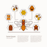 Honey bee icon illustration. Stock Image