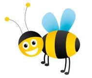 Honey bee illustration stock image