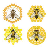 Honey2. Honey bee set. Vector. Set of honey and bee labels for honey logo products. Isolated insect icon. Flying bee. Flat style vector illustration Royalty Free Stock Images