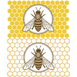 Honey1. Honey bee set. Vector. Set of honey and bee labels for honey logo products. Isolated insect icon. Flying bee. Flat style vector illustration Stock Photo
