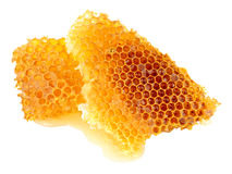 Honey Bee Wax Honeycomb royalty free stock images