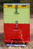 Honey Beehive colorido en el cierre del prado para arriba Colmena pintada roja, verde y amarilla de la abeja al lado de un bosque Imagenes de archivo