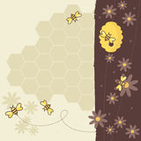 Honey Bees. Collect flowers for the honey bee Stock Images