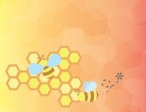 Honey Bees Fotografia Stock Libera da Diritti