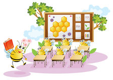 Honey bees in a classroom Royalty Free Stock Photos