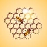 Honey bees and honeycomb background. Vector illustration stock illustration