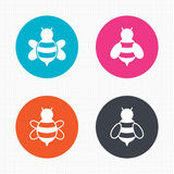Honey bees icons. Bumblebees symbols. Circle buttons. Honey bees icons. Bumblebees symbols. Flying insects with sting signs. Seamless squares texture. Vector stock illustration