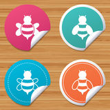 Honey bees icons. Bumblebees symbols. Royalty Free Stock Images