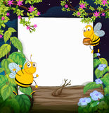 Honey bees and a white board Stock Photos