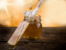 Honey with beeswax and flower stock photo