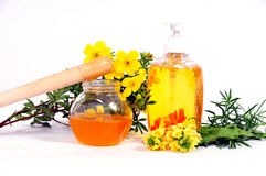 Honey Body Sugaring Stock Images