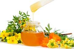 Honey Body Sugaring Stock Images