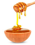 Honey in a bowl Royalty Free Stock Image
