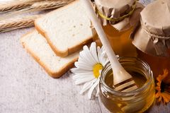 Honey and bread Royalty Free Stock Photos