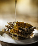 Honey. And bread on plate Royalty Free Stock Image