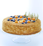 Honey cake with berry. Royalty Free Stock Photography
