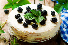 Honey cake with blackberry and whipped cream. Stock Images