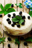 Honey cake with blackberry and whipped cream. Royalty Free Stock Photo