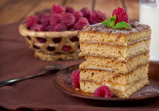 Honey cake Royalty Free Stock Photo