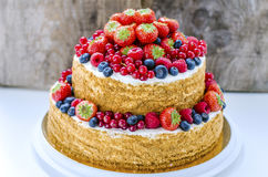 Honey cake with fruits Royalty Free Stock Photos