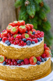 Honey cake with fruits Royalty Free Stock Photo