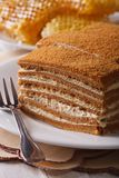 Honey cake macro on a plate on background honeycomb. vertical Royalty Free Stock Images