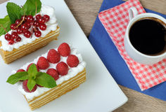 Honey cake. Piece of honey cake with whipped cream and raspberries Stock Images