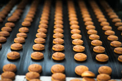 Honey-cake  on the production line at the bakery Stock Image