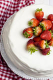 Honey cake. With white cream and strawberries Stock Images