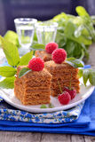 Honey cakes in the shape of squares decorated with Royalty Free Stock Photos